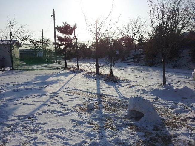 2012-02011.jpg